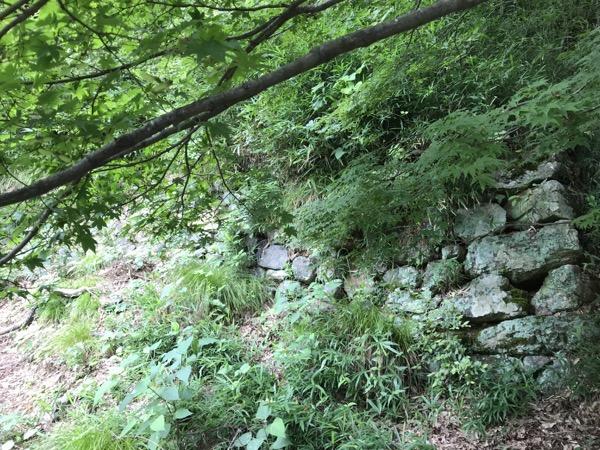 小谷城 石垣
