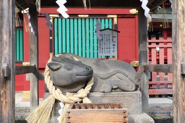 鹽竈神社 撫で牛