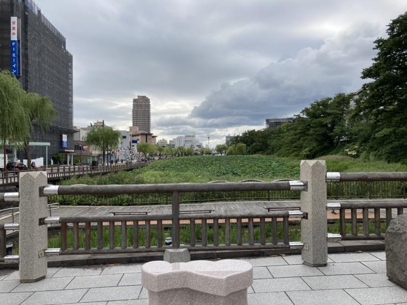 久保田城の堀